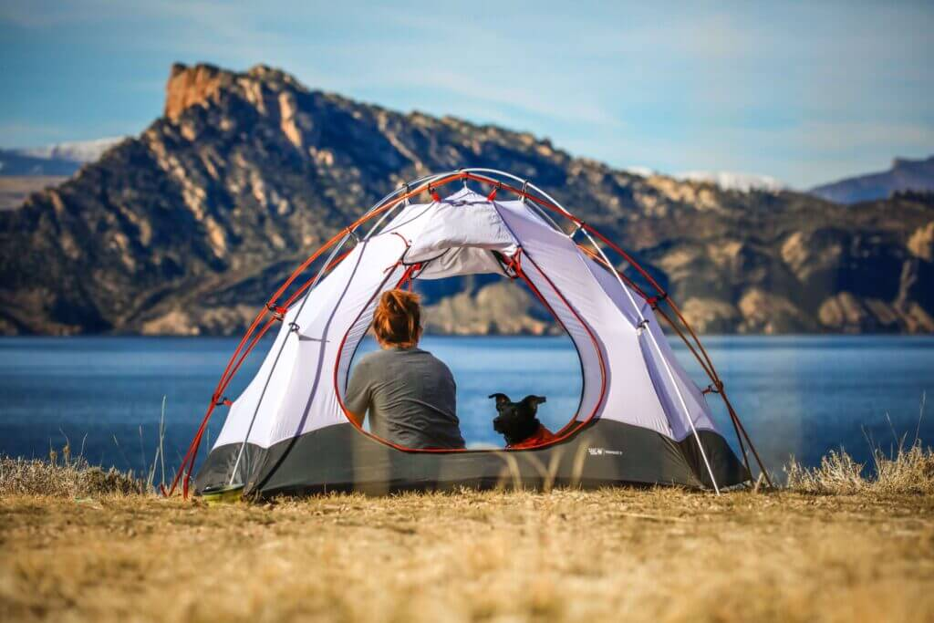 Camping with a dog